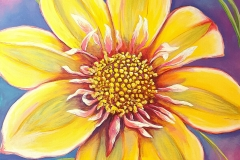 "Hawaiian Dahlia 30""X30"" Acrylic on Gallery Wrapped Canvas"